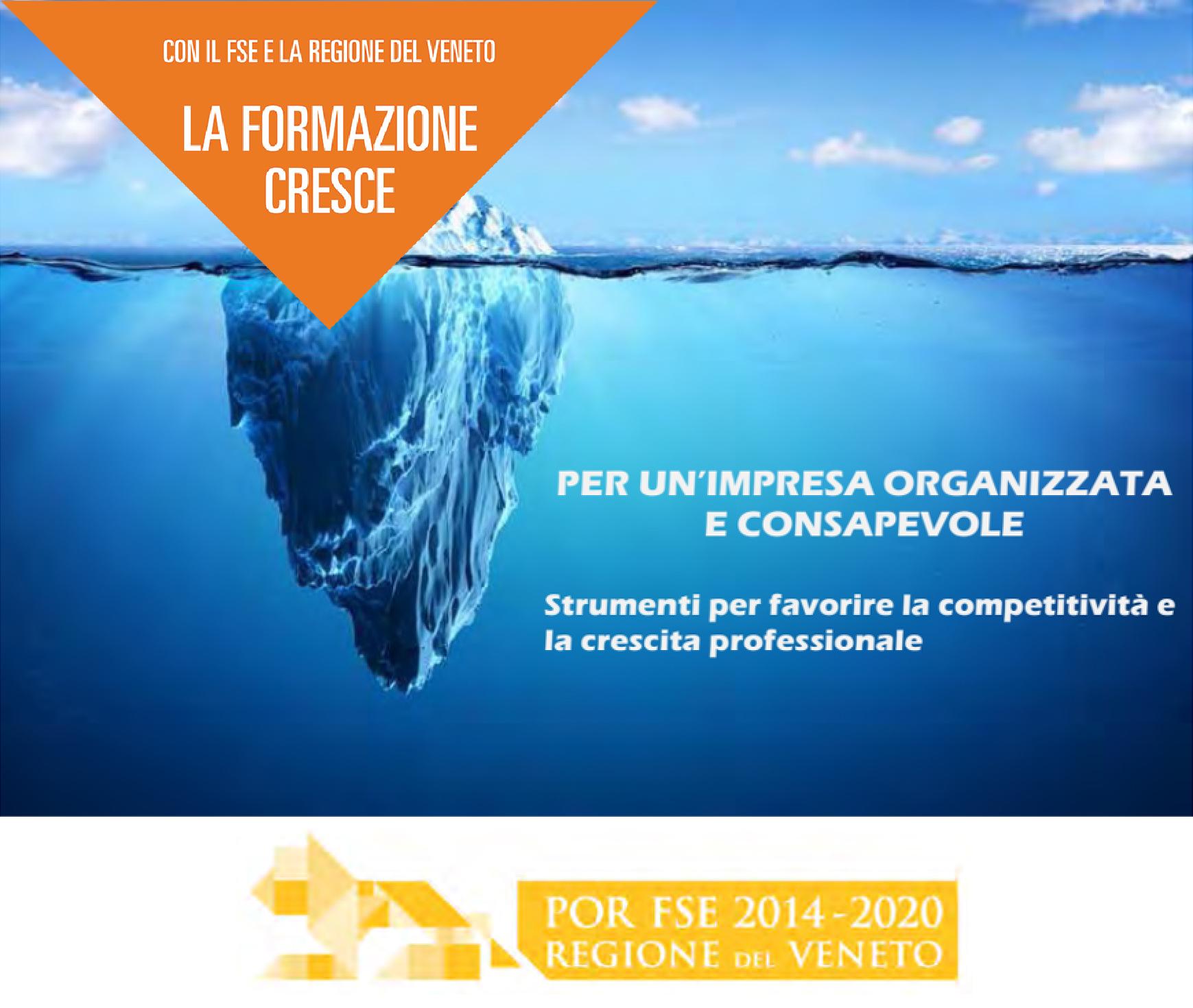"""Fondo Sociale Europeo – POR 2014/2020 – Ob """"Investimenti a favore della crescita e dell'occupazione""""."""